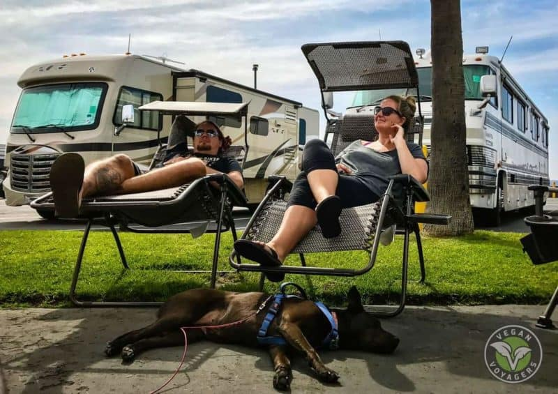 Interested in full-time RV living? Don't want to leave your pets behind? Or your chickens? Aaron and Hayden Hall interview with The Savvy Couple to share their experience living in an RV with all of their pets. The Hall's also share how to keep their Vegan lifestyle while out on the open road. This is a must read! RV living | Full-time RV | Vegan | Vegan Lifestyle | Vegan Diet | Vegan food |