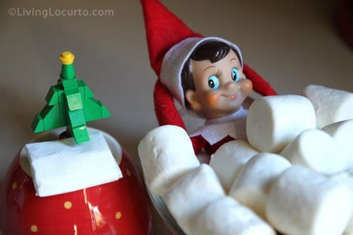 elf under pile of marshmallows next to tiny Christmas tree