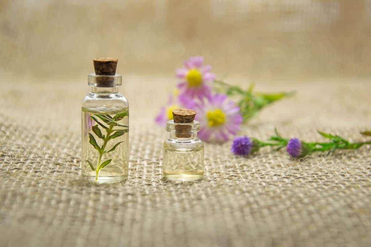small glass jars with tiny leaves and flowers on burlap