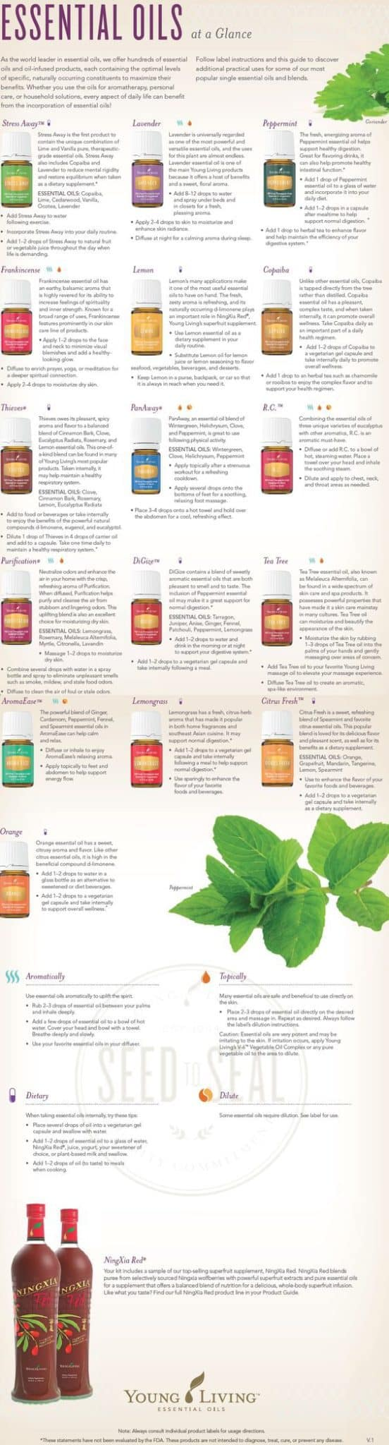 These essential oil hacks for beginners are AMAZING! I was looking everywhere for a resource on learning about essential oils. From young living guides, diffusers, blends, recipes, remedies, and essential oil home hacks this article covers it all! Pin this for later! #EssentialOils #Diffusers #Blends #HomeHacks #EssentialOilHacks #YoungLiving #Natural #Health #Wellness #MindBodySoul