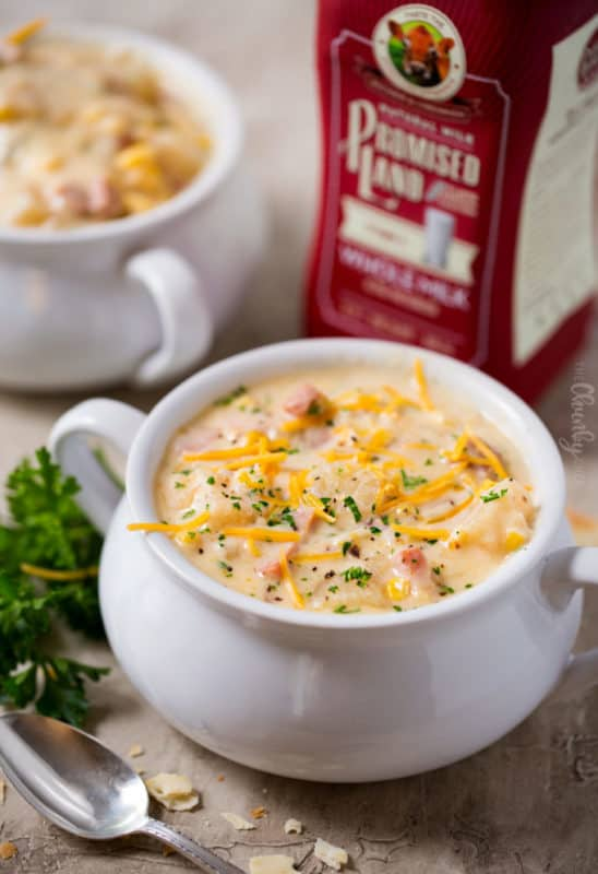 slow cooker cheesy ham chowder cheap dinner ideas with ham