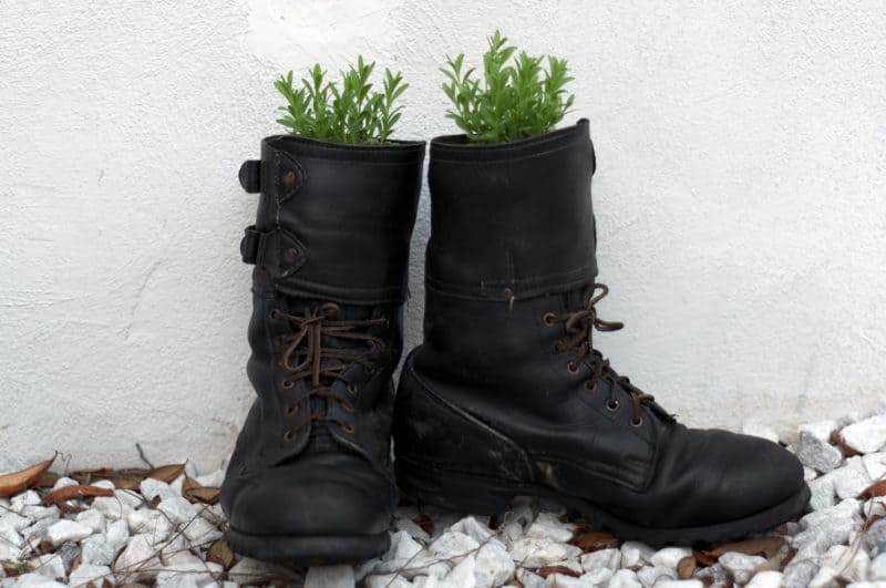 pair of old black boots reused as planters in effort for minimalist living