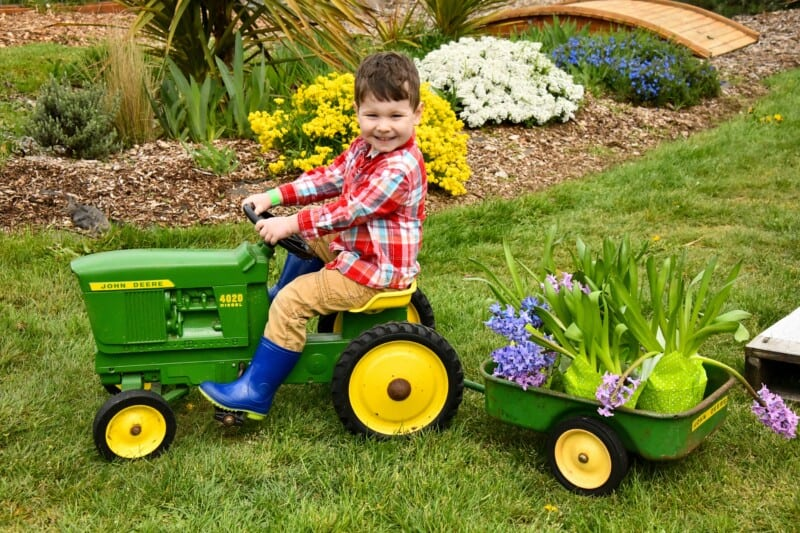 how to make money as a kid lawn services