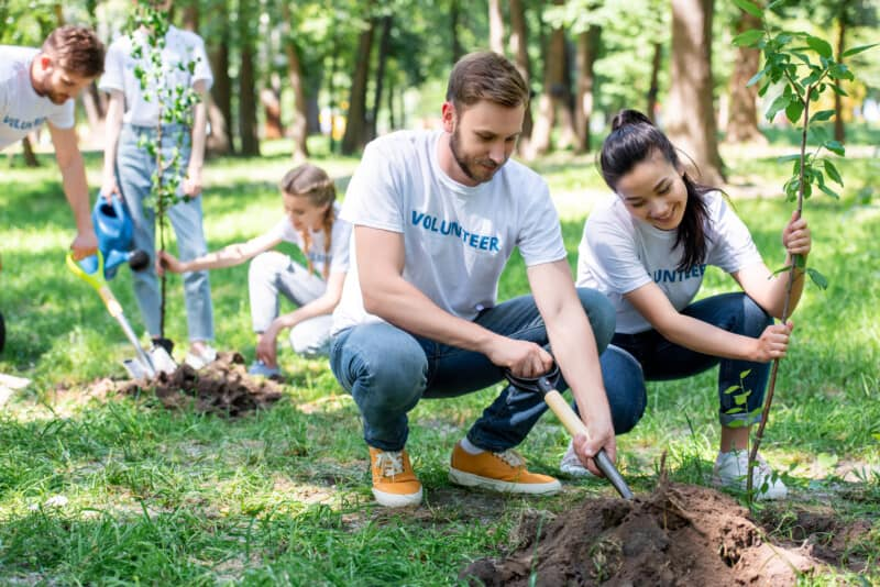 things to do near me in your area volunteer to plant trees